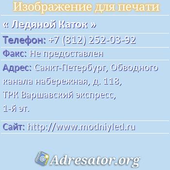 Ледяной Каток по адресу: Санкт-Петербург, Обводного канала набережная, д. 118, ТРК Варшавский экспресс, 1-й эт.