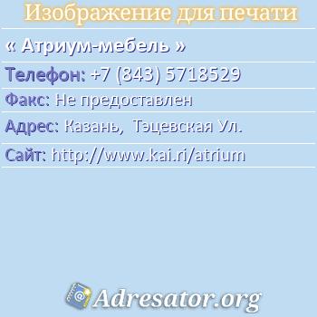Атриум-мебель по адресу: Казань,  Тэцевская Ул.