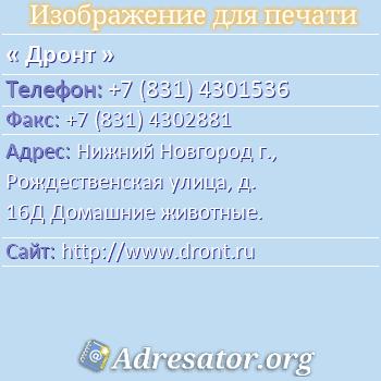 Дронт по адресу: Нижний Новгород г., Рождественская улица, д. 16Д Домашние животные.