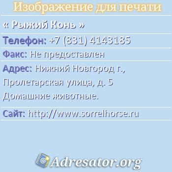 Рыжий Конь по адресу: Нижний Новгород г., Пролетарская улица, д. 5 Домашние животные.