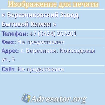 Березниковский Завод Бытовой Химии по адресу: г. Березники, Новосодовая ул., 5