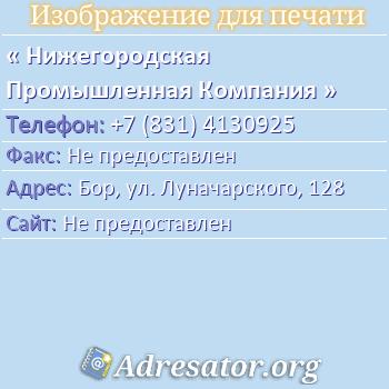 Нижегородская Промышленная Компания по адресу: Бор, ул. Луначарского, 128