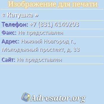 Катушка по адресу: Нижний Новгород г., Молодежный проспект, д. 33