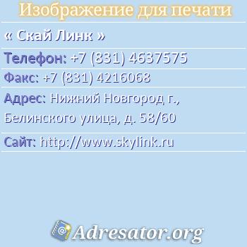 Скай Линк по адресу: Нижний Новгород г., Белинского улица, д. 58/60