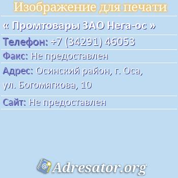 Промтовары ЗАО Нега-ос по адресу: Осинский район, г. Оса, ул. Богомягкова, 10