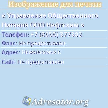 Управление Общественного Питания ООО Нефтехим по адресу: Нижнекамск г.