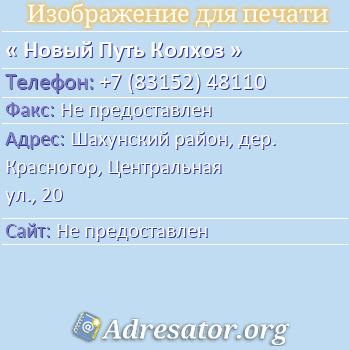 Новый Путь Колхоз по адресу: Шахунский район, дер. Красногор, Центральная ул., 20