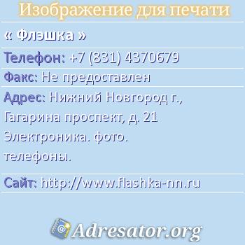 Флэшка по адресу: Нижний Новгород г., Гагарина проспект, д. 21 Электроника. фото. телефоны.