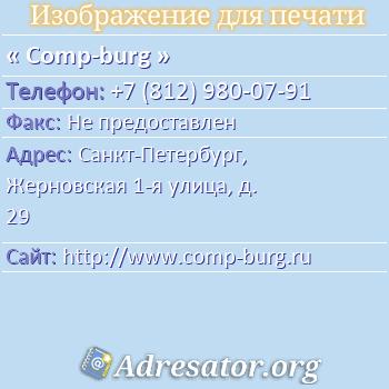 Comp-burg по адресу: Санкт-Петербург, Жерновская 1-я улица, д. 29
