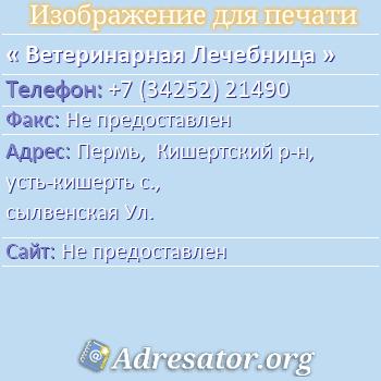 Ветеринарная Лечебница по адресу: Пермь,  Кишертский р-н, усть-кишерть с., сылвенская Ул.