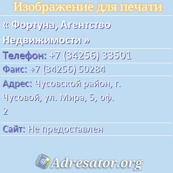 Фортуна, Агентство Недвижимости по адресу: Чусовской район, г. Чусовой, ул. Мира, 5, оф. 2