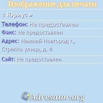 Юриус по адресу: Нижний Новгород г., Стрелка улица, д. 4