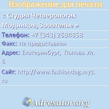 Студия Четвероногих Модников, Зооателье по адресу: Екатеринбург,  Попова Ул. 6