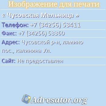 Чусовская Мельница по адресу: Чусовской р-н, лямино пос., калинина Ул.