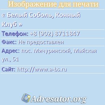 Белый Соболь, Конный Клуб по адресу: пос. Мичуринский, Майская ул., 51