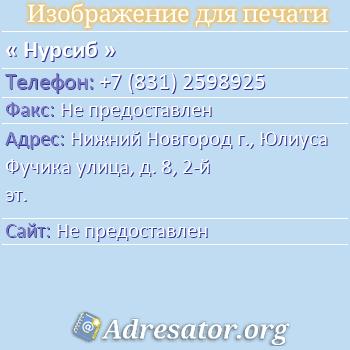 Нурсиб по адресу: Нижний Новгород г., Юлиуса Фучика улица, д. 8, 2-й эт.