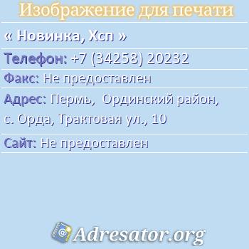 Новинка, Хсп по адресу: Пермь,  Ординский район, с. Орда, Трактовая ул., 10