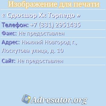 Сдюсшор Хк Торпедо по адресу: Нижний Новгород г., Лоскутова улица, д. 10