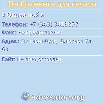 Окружной по адресу: Екатеринбург,  Блюхера Ул. 63