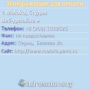 Moloko, Студия Веб-дизайна по адресу: Пермь,  Беляева Ул.