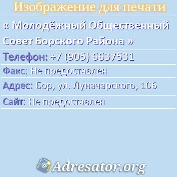 Молодёжный Общественный Совет Борского Района по адресу: Бор, ул. Луначарского, 106