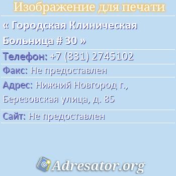 Городская Клиническая Больница # 30 по адресу: Нижний Новгород г., Березовская улица, д. 85
