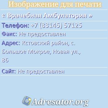 Врачебная Амбулатория по адресу: Кстовский район, с. Большое Мокрое, Новая ул., 86