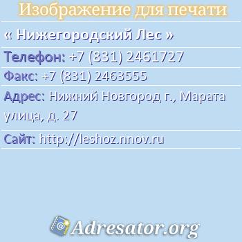 Нижегородский Лес по адресу: Нижний Новгород г., Марата улица, д. 27