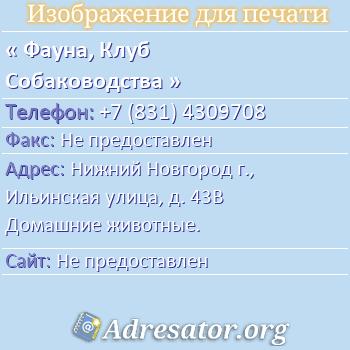 Фауна, Клуб Собаководства по адресу: Нижний Новгород г., Ильинская улица, д. 43В Домашние животные.
