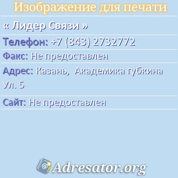 Лидер Связи по адресу: Казань,  Академика губкина Ул. 5