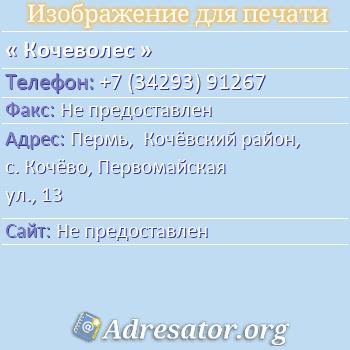 Кочеволес по адресу: Пермь,  Кочёвский район, с. Кочёво, Первомайская ул., 13