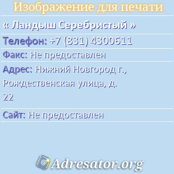 Ландыш Серебристый по адресу: Нижний Новгород г., Рождественская улица, д. 22
