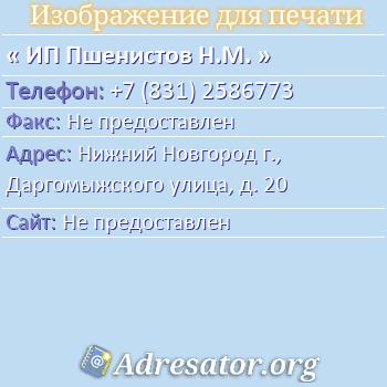 ИП Пшенистов Н.М. по адресу: Нижний Новгород г., Даргомыжского улица, д. 20