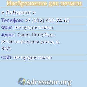 Лабиринт по адресу: Санкт-Петербург, Железноводская улица, д. 34/5