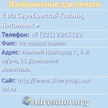 Из Серебристой Гавани, Питомник по адресу: Нижний Новгород г., 6-й м/р-н, 11 Домашние животные.