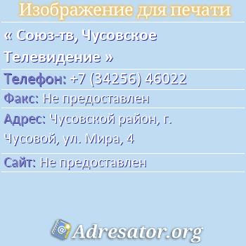 Союз-тв, Чусовское Телевидение по адресу: Чусовской район, г. Чусовой, ул. Мира, 4