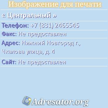 Центральный по адресу: Нижний Новгород г., Чкалова улица, д. 4