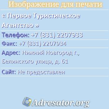 Первое Туристическое Агентство по адресу: Нижний Новгород г., Белинского улица, д. 61