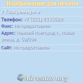 Газпремиум по адресу: Нижний Новгород г., Новая улица, д. 59/104