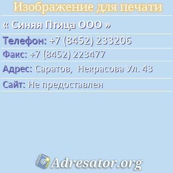 Синяя Птица ООО по адресу: Саратов,  Некрасова Ул. 43