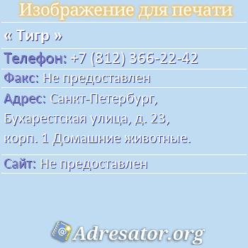 Тигр по адресу: Санкт-Петербург, Бухарестская улица, д. 23, корп. 1 Домашние животные.