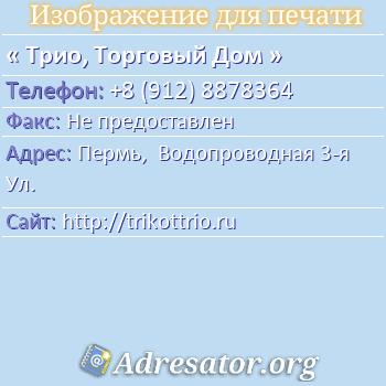 Трио, Торговый Дом по адресу: Пермь,  Водопроводная 3-я Ул.