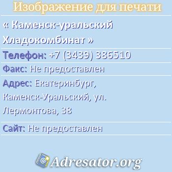Каменск-уральский Хладокомбинат по адресу: Екатеринбург,  Каменск-Уральский, ул. Лермонтова, 38