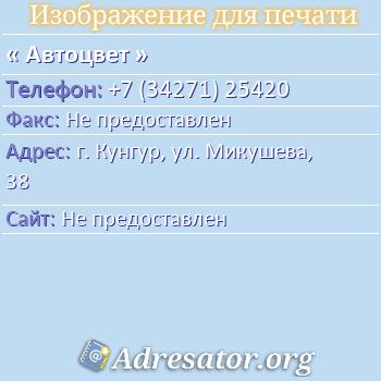 Автоцвет по адресу: г. Кунгур, ул. Микушева, 38