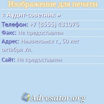 Аудит-советник по адресу: Нижнекамск г., 50 лет октября Ул.