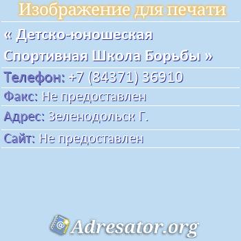 Детско-юношеская Спортивная Школа Борьбы по адресу: Зеленодольск Г.