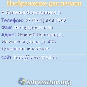 Ангелы Зоосервиса по адресу: Нижний Новгород г., Ильинская улица, д. 43В Домашние животные.