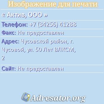 Актив, ООО по адресу: Чусовской район, г. Чусовой, ул. 50 Лет ВЛКСМ, 2