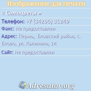Самоцветы по адресу: Пермь,  Еловский район, с. Елово, ул. Калинина, 14
